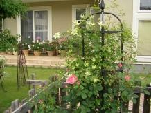 中古住宅の庭のリフォームについてみていきましょう