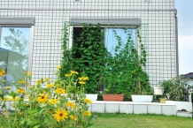 「エコ住宅への建替え」の補助金は 「省エネ性能」によって決まる!